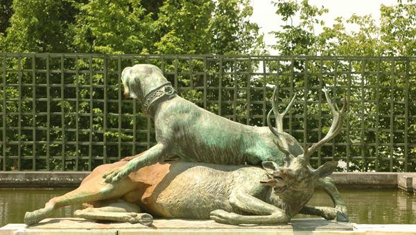 Limier et cerf.  Jacques Houzeau